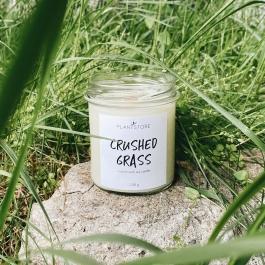 PLANTSTORE CRUSHED GRASS